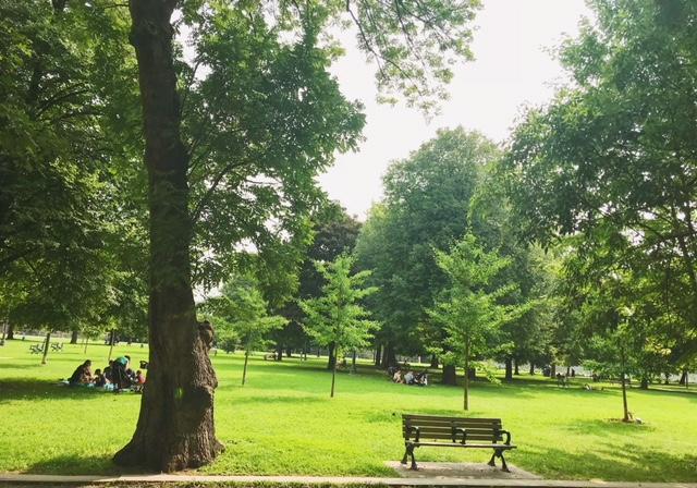 trinitybellwoodspark.jpeg